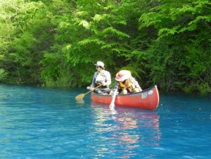 青い水面をゆったりお散歩